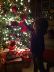 Christmas week wrap-up!