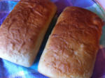 Peasant Bread- a family favorite recipe!